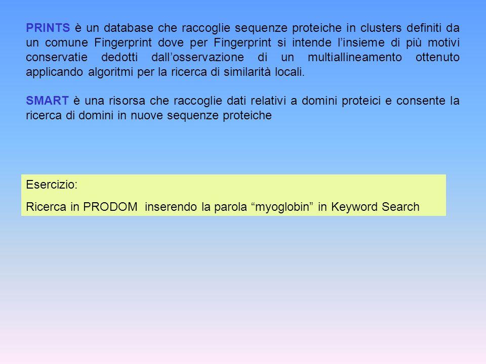 Esercizio: Ricerca in PRODOM inserendo la parola myoglobin in Keyword Search PRINTS è un database che raccoglie sequenze proteiche in clusters definit