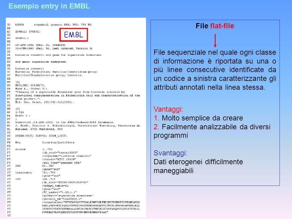 Esempio entry in EMBL File flat-file File sequenziale nel quale ogni classe di informazione è riportata su una o più linee consecutive identificate da