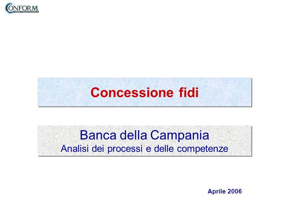 Banca della Campania Analisi dei processi e delle competenze Concessione fidi Aprile 2006