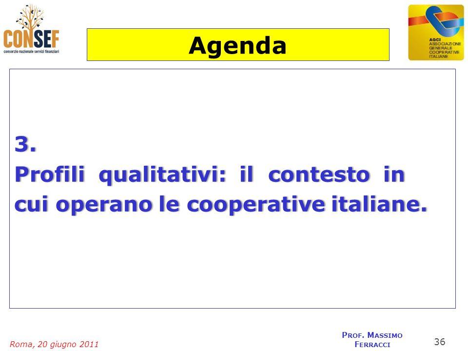 Roma, 20 giugno 2011 P ROF. M ASSIMO F ERRACCI 3. Profili qualitativi: il contesto inProfili qualitativi: il contesto in cui operano le cooperative it
