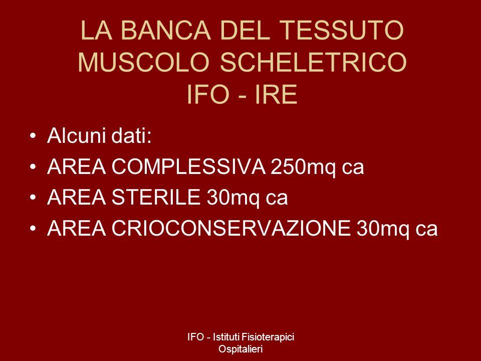 IFO - Istituti Fisioterapici Ospitalieri LA BANCA DEL TESSUTO MUSCOLO SCHELETRICO IFO - IRE Alcuni dati: AREA COMPLESSIVA 250mq ca AREA STERILE 30mq c