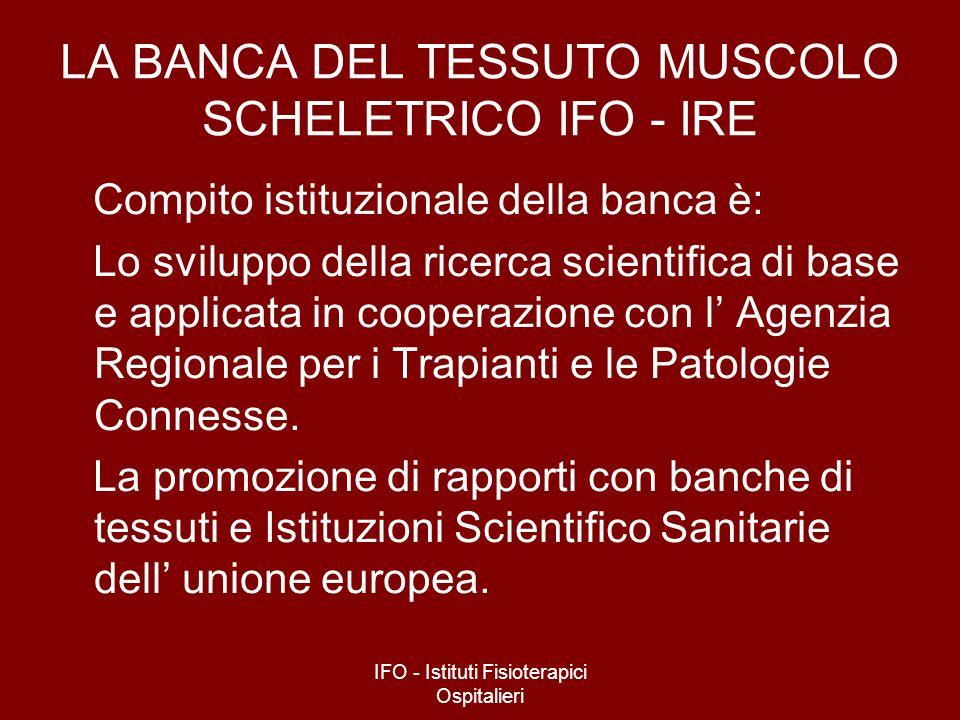 IFO - Istituti Fisioterapici Ospitalieri LA BANCA DEL TESSUTO MUSCOLO SCHELETRICO IFO - IRE Compito istituzionale della banca è: Lo sviluppo della ric