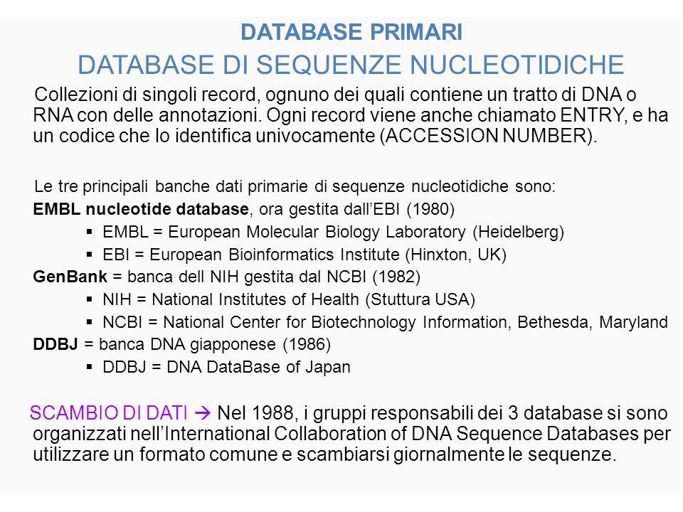 DATABASE PRIMARI DATABASE DI SEQUENZE NUCLEOTIDICHE Collezioni di singoli record, ognuno dei quali contiene un tratto di DNA o RNA con delle annotazioni.
