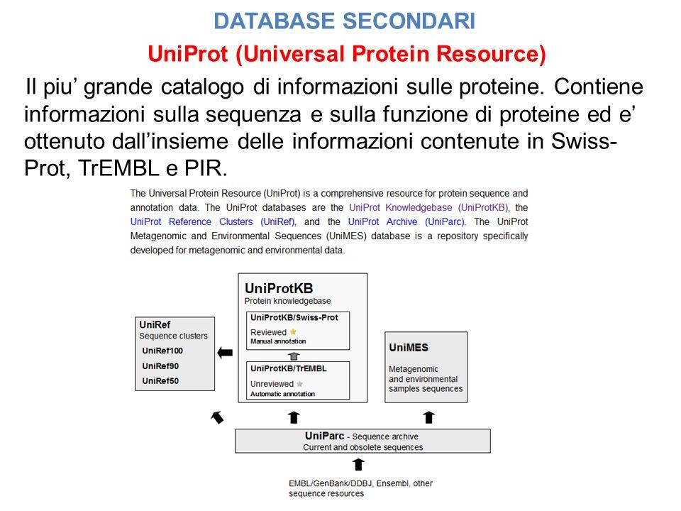 DATABASE SECONDARI UniProt (Universal Protein Resource) Il piu grande catalogo di informazioni sulle proteine. Contiene informazioni sulla sequenza e