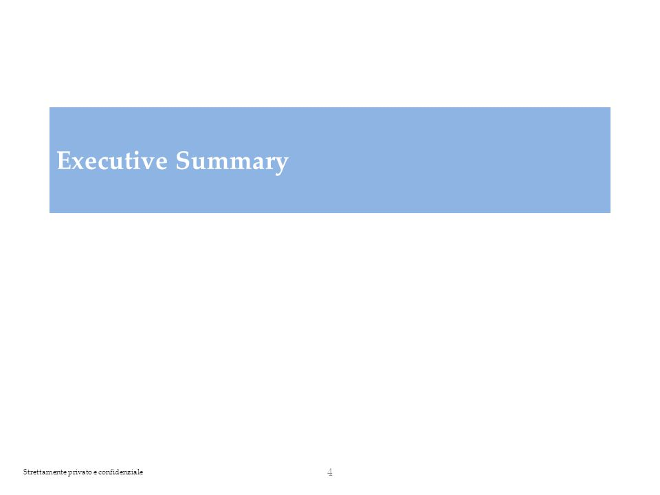 Strettamente privato e confidenziale Executive Summary 4