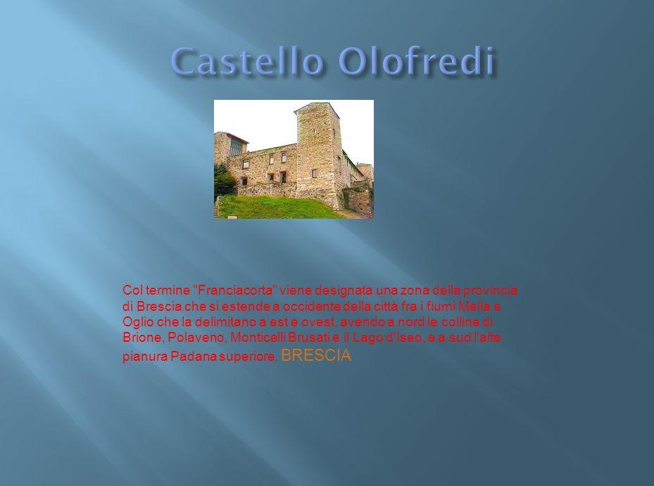 Nel XIV secolo al posto del castello c era probabilmente un grande latifondo in affitto a Guglielmo Assonica.