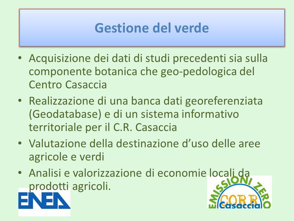 Acquisizione dei dati di studi precedenti sia sulla componente botanica che geo-pedologica del Centro Casaccia Realizzazione di una banca dati georeferenziata (Geodatabase) e di un sistema informativo territoriale per il C.R.