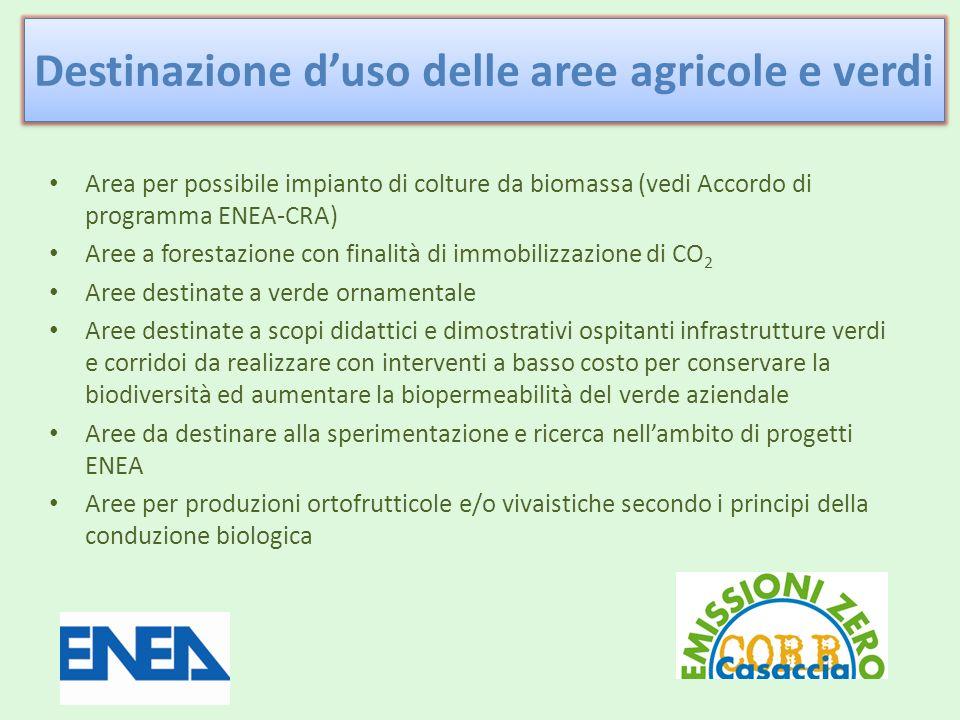 Area per possibile impianto di colture da biomassa (vedi Accordo di programma ENEA-CRA) Aree a forestazione con finalità di immobilizzazione di CO 2 Aree destinate a verde ornamentale Aree destinate a scopi didattici e dimostrativi ospitanti infrastrutture verdi e corridoi da realizzare con interventi a basso costo per conservare la biodiversità ed aumentare la biopermeabilità del verde aziendale Aree da destinare alla sperimentazione e ricerca nellambito di progetti ENEA Aree per produzioni ortofrutticole e/o vivaistiche secondo i principi della conduzione biologica Destinazione duso delle aree agricole e verdi