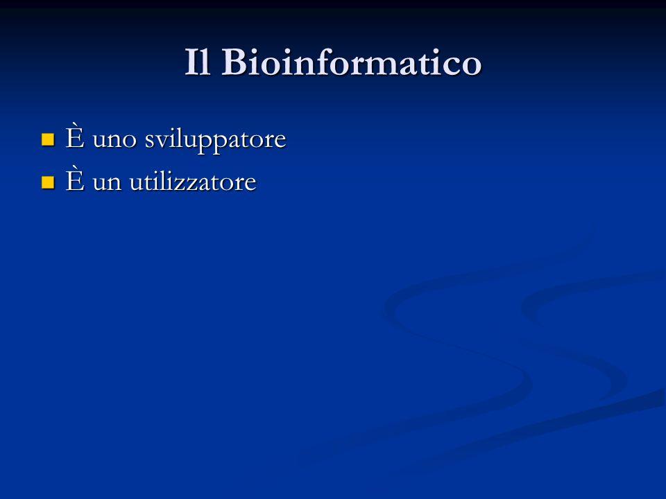 Il Bioinformatico È uno sviluppatore È uno sviluppatore È un utilizzatore È un utilizzatore