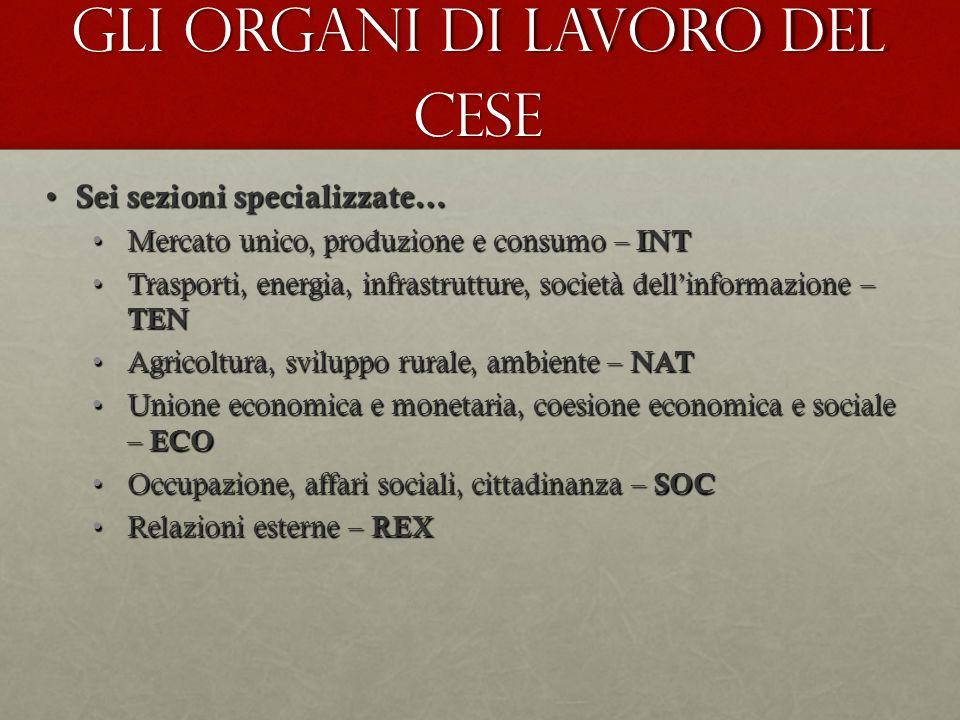 Gli organi di lavoro del CESE Sei sezioni specializzate… Sei sezioni specializzate… Mercato unico, produzione e consumo – INTMercato unico, produzione