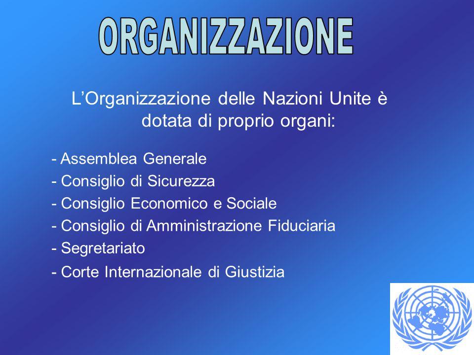 LOrganizzazione delle Nazioni Unite è dotata di proprio organi: - Assemblea Generale - Consiglio di Sicurezza - Consiglio Economico e Sociale - Consiglio di Amministrazione Fiduciaria - Segretariato - Corte Internazionale di Giustizia