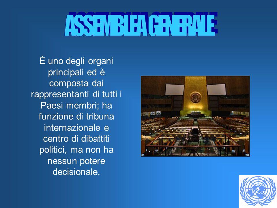 È uno degli organi principali ed è composta dai rappresentanti di tutti i Paesi membri; ha funzione di tribuna internazionale e centro di dibattiti politici, ma non ha nessun potere decisionale.