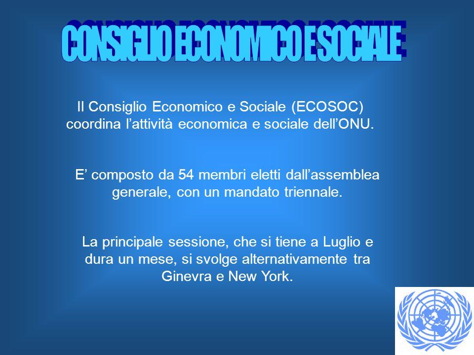Il Consiglio Economico e Sociale (ECOSOC) coordina lattività economica e sociale dellONU. E composto da 54 membri eletti dallassemblea generale, con u