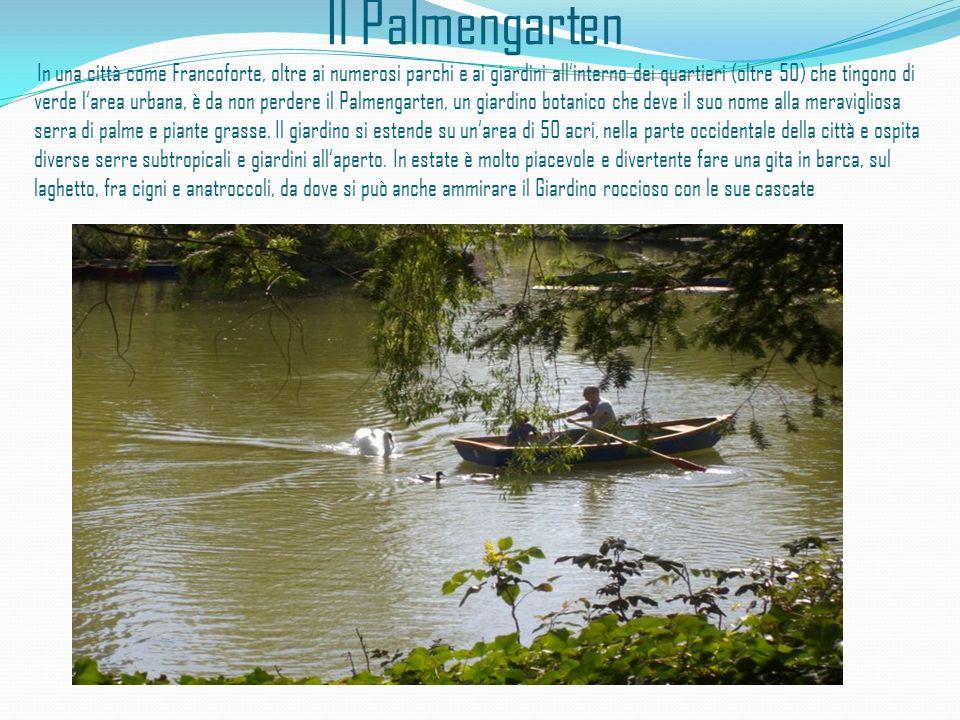 Il Palmengarten In una città come Francoforte, oltre ai numerosi parchi e ai giardini allinterno dei quartieri (oltre 50) che tingono di verde larea u