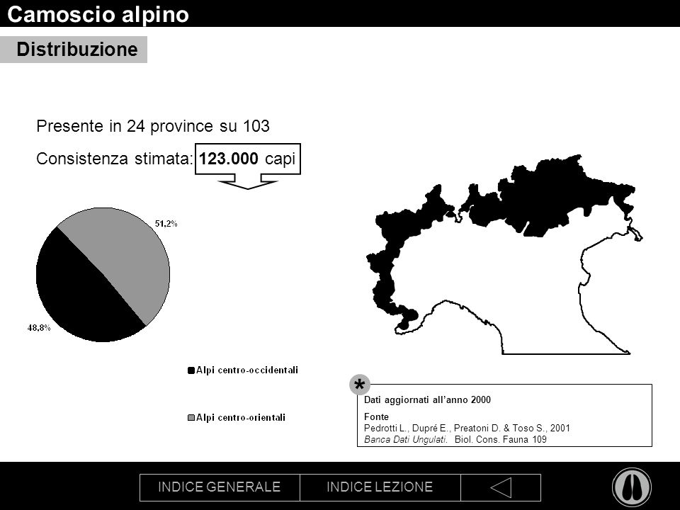 INDICE GENERALEINDICE LEZIONE Camoscio alpino Presente in 24 province su 103 Consistenza stimata: 123.000 capi Distribuzione Dati aggiornati allanno 2000 Fonte Pedrotti L., Dupré E., Preatoni D.