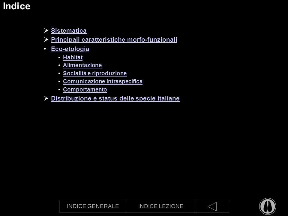 INDICE GENERALEINDICE LEZIONE Indice Sistematica Principali caratteristiche morfo-funzionali Eco-etologia Habitat Alimentazione Socialità e riproduzione Comunicazione intraspecifica Comportamento Distribuzione e status delle specie italiane