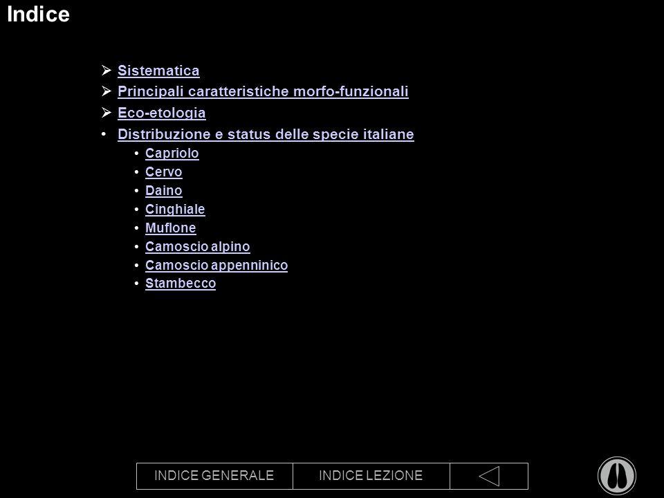 INDICE GENERALEINDICE LEZIONE Indice Sistematica Principali caratteristiche morfo-funzionali Eco-etologia Distribuzione e status delle specie italiane Capriolo Cervo Daino Cinghiale Muflone Camoscio alpino Camoscio appenninico Stambecco