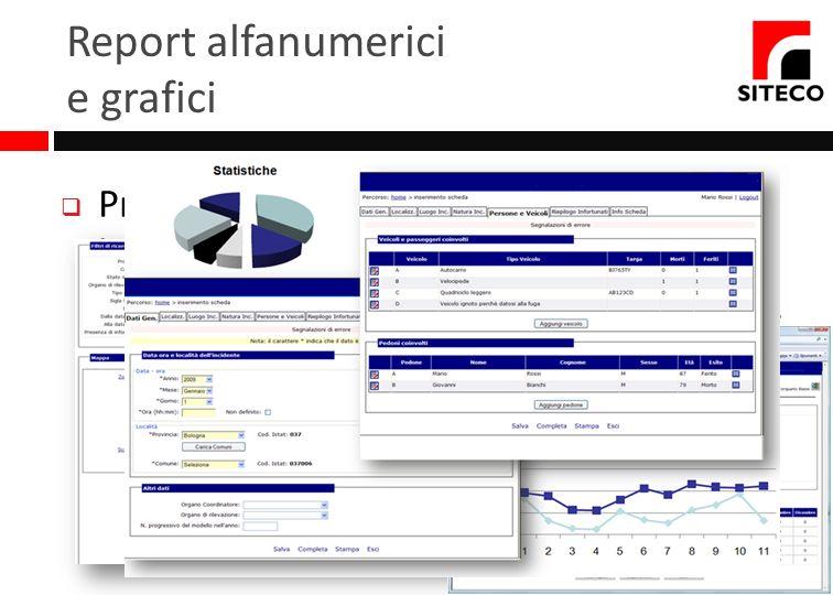 Report alfanumerici e grafici Produzione di report di incidentalità e lesività realizzati su un ampio set di parametri Grafici: incidenti visualizzati