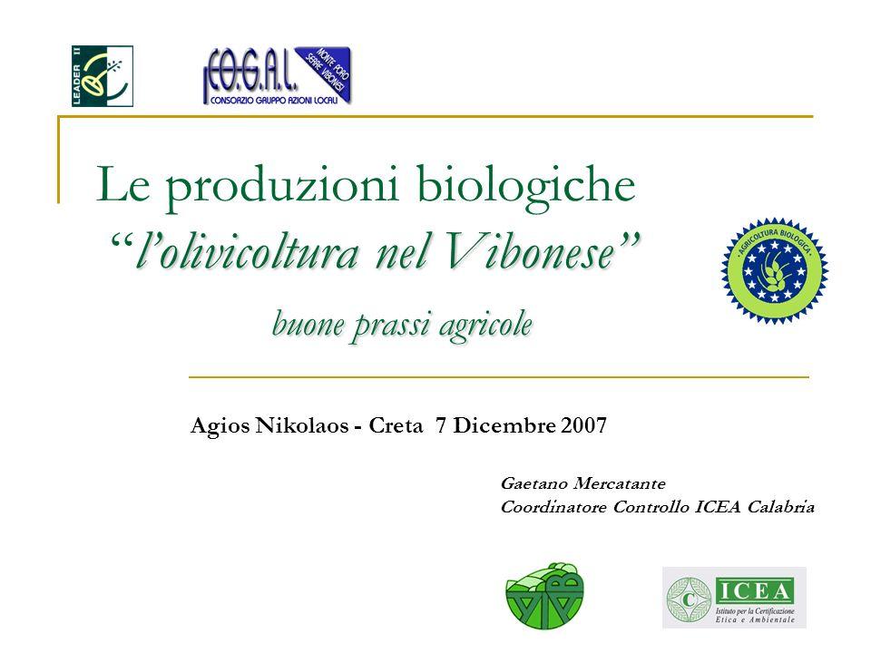 lolivicoltura nel Vibonese buone prassi agricole Le produzioni biologiche lolivicoltura nel Vibonese buone prassi agricole Gaetano Mercatante Coordina