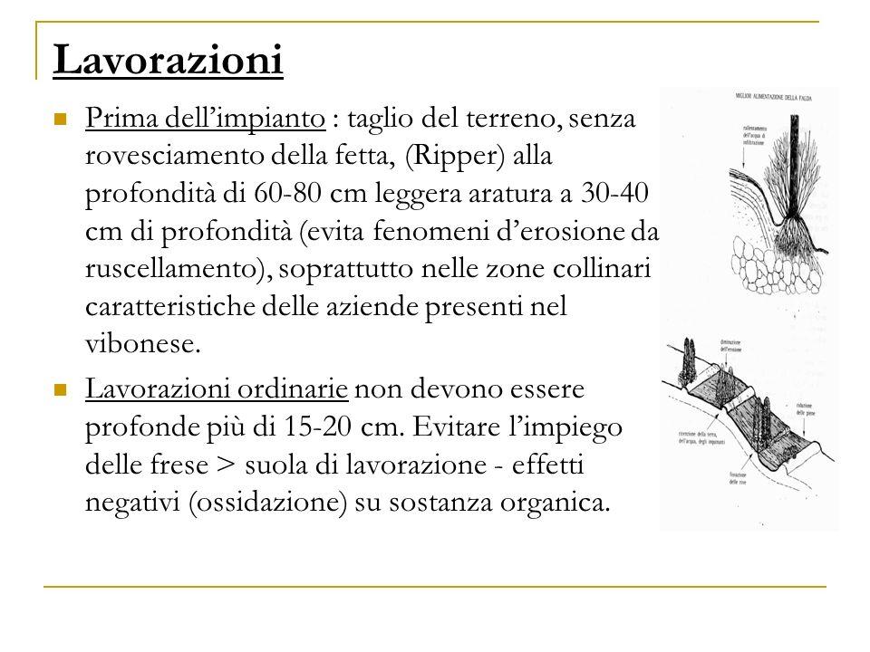 Lavorazioni Prima dellimpianto : taglio del terreno, senza rovesciamento della fetta, (Ripper) alla profondità di 60-80 cm leggera aratura a 30-40 cm