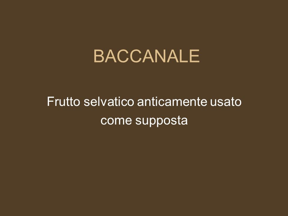BABBUCCIA Padre gay