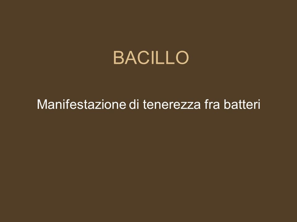 BACILLO Manifestazione di tenerezza fra batteri