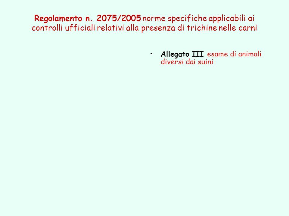 Regolamento n. 2075/2005 norme specifiche applicabili ai controlli ufficiali relativi alla presenza di trichine nelle carni Allegato III esame di anim