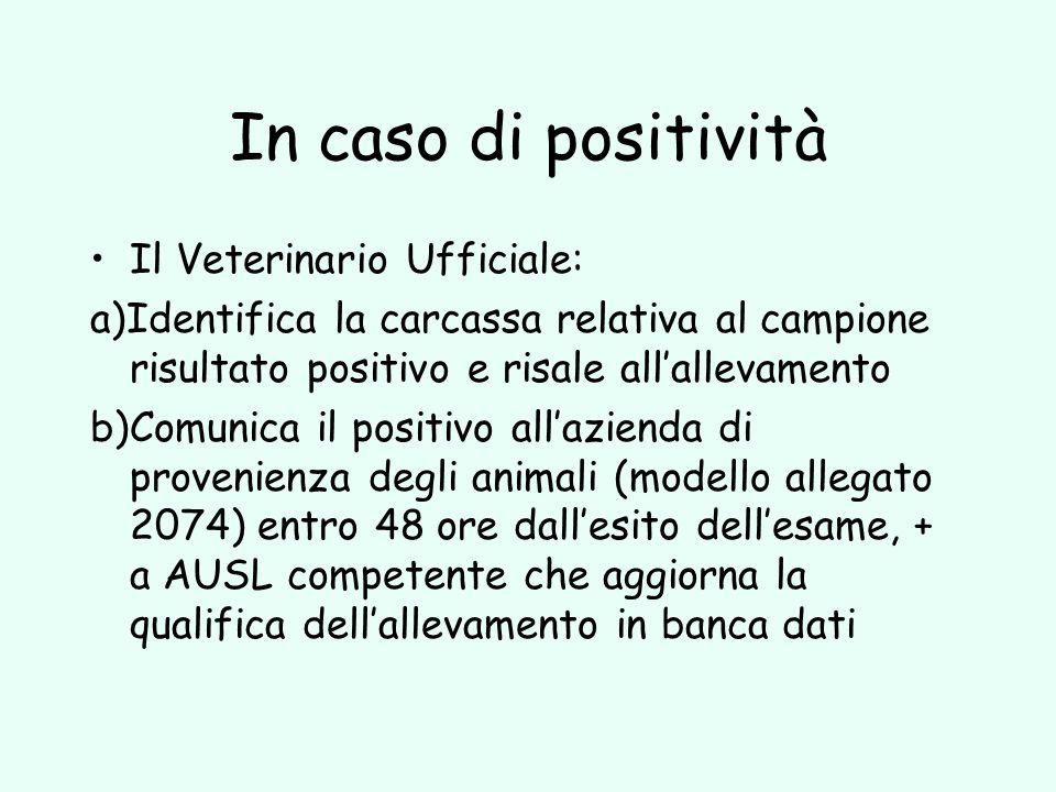 In caso di positività Il Veterinario Ufficiale: a)Identifica la carcassa relativa al campione risultato positivo e risale allallevamento b)Comunica il