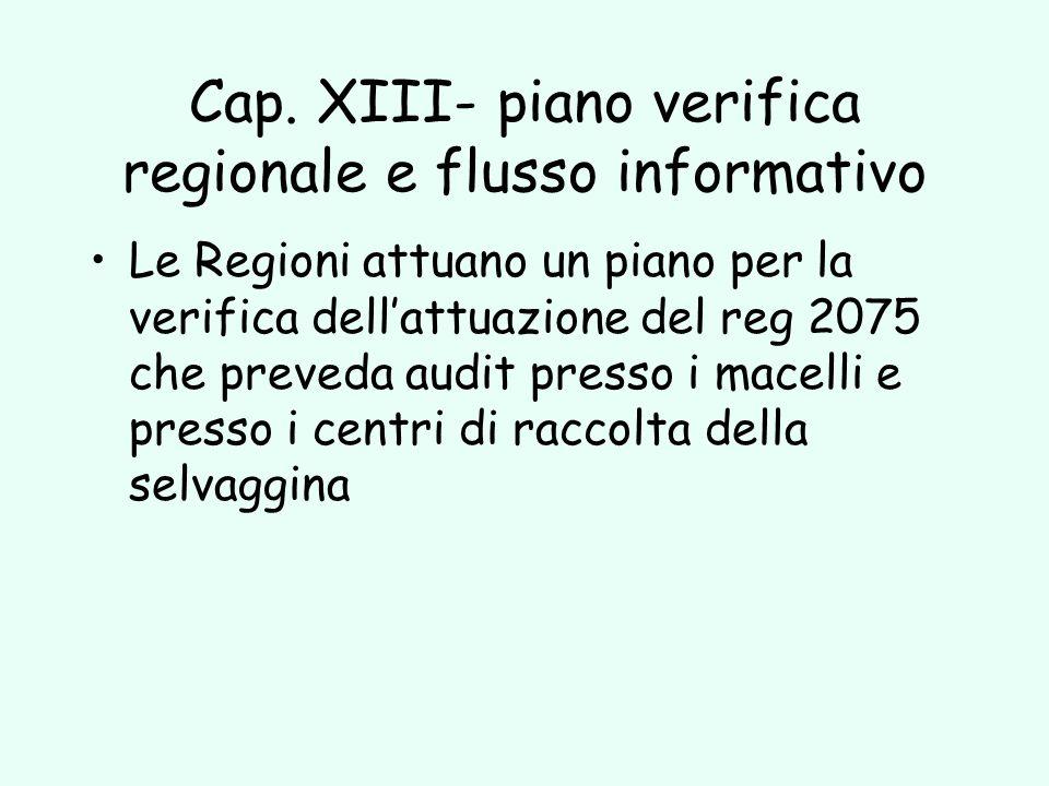 Cap. XIII- piano verifica regionale e flusso informativo Le Regioni attuano un piano per la verifica dellattuazione del reg 2075 che preveda audit pre