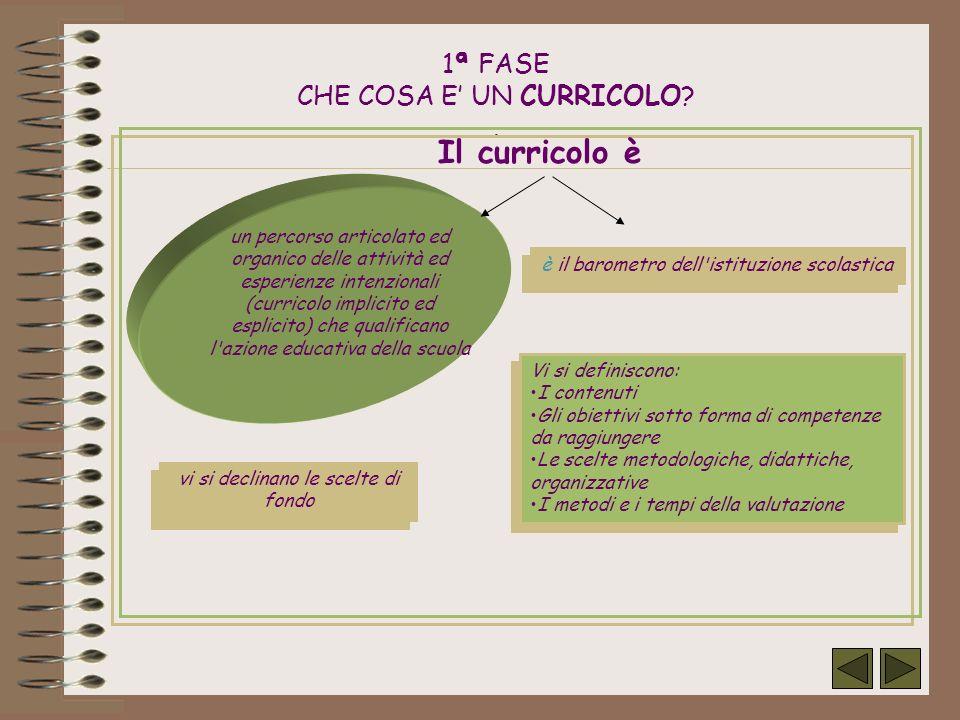 Classi coinvolte Scuola elementare: 3 moduli di 1^ cl.; 2 moduli di 2^ cl.; 3 moduli di 3^cl.; 3 moduli di 4^ cl.; 3 moduli di 5^ cl.