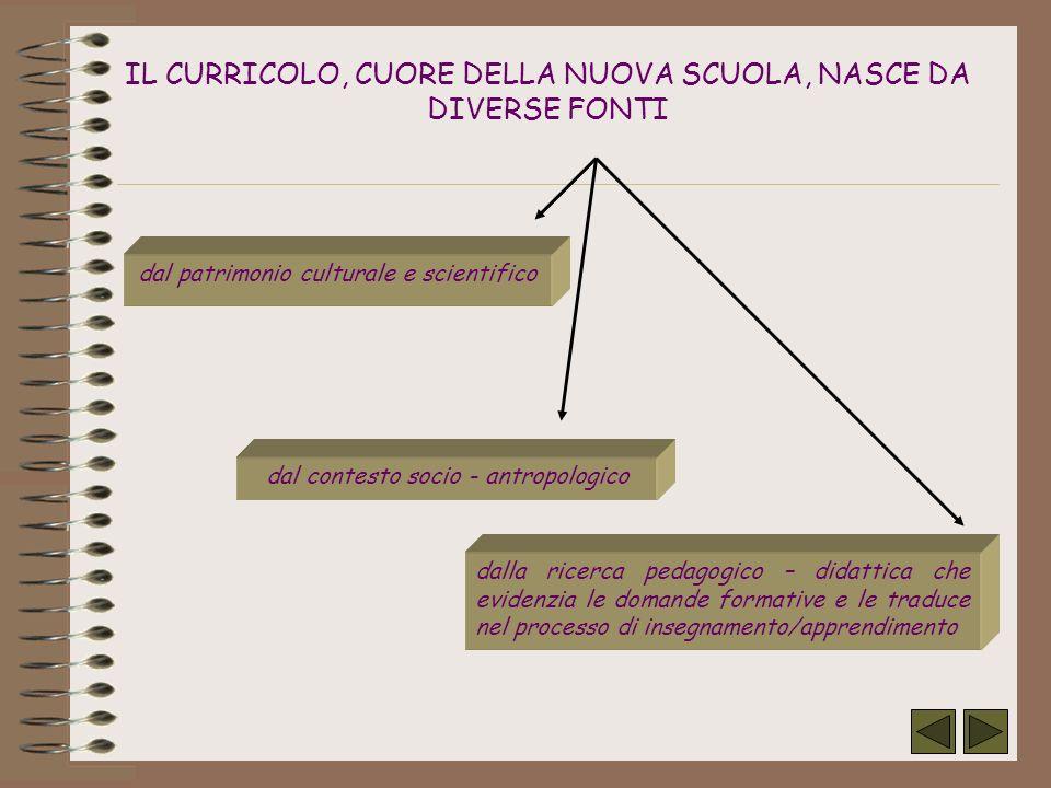 Percorso strutturato per il miglioramento della prosocialità (Progetto Libera – 2° anno) Esperienze di gemellaggio con scuole estere (Progetto Comenius: Mestieri, arti e tradizioni.