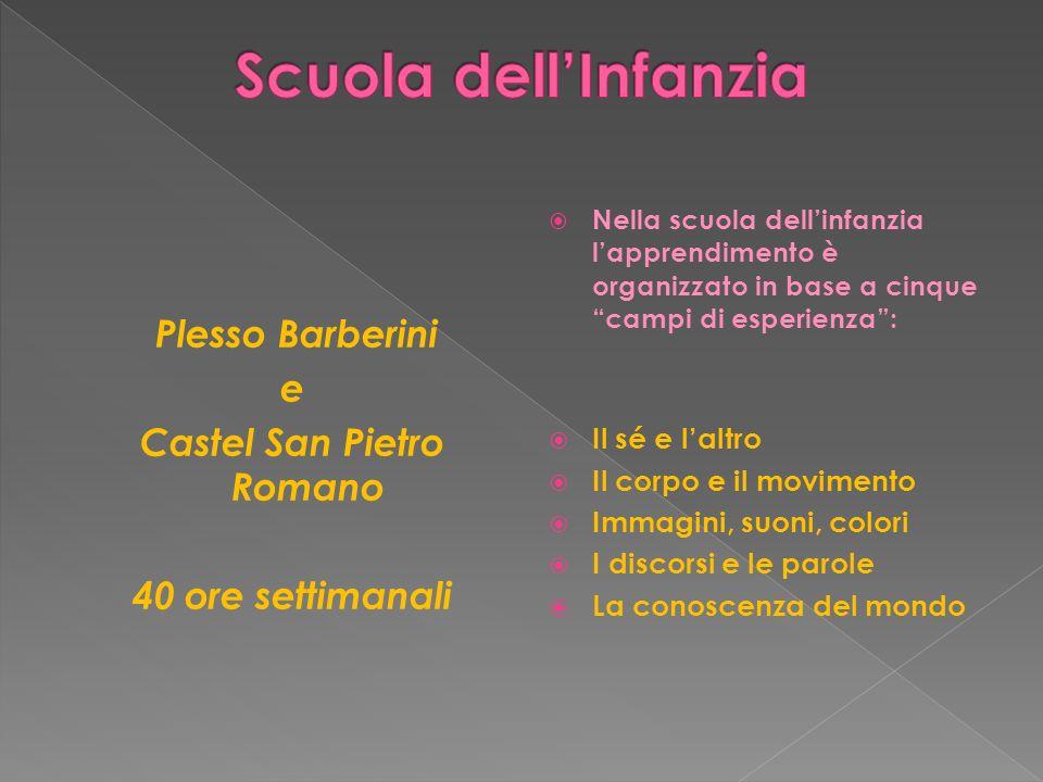 Plesso Barberini e Castel San Pietro Romano 40 ore settimanali Nella scuola dellinfanzia lapprendimento è organizzato in base a cinque campi di esperi