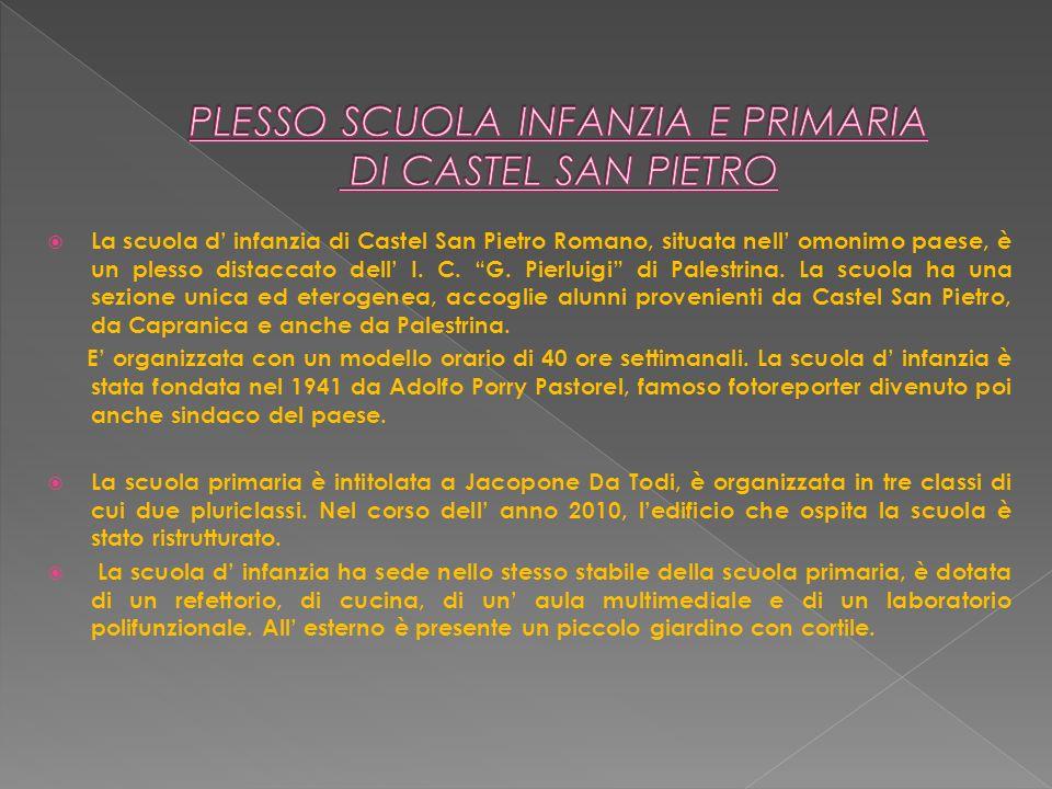 La scuola d infanzia di Castel San Pietro Romano, situata nell omonimo paese, è un plesso distaccato dell I. C. G. Pierluigi di Palestrina. La scuola