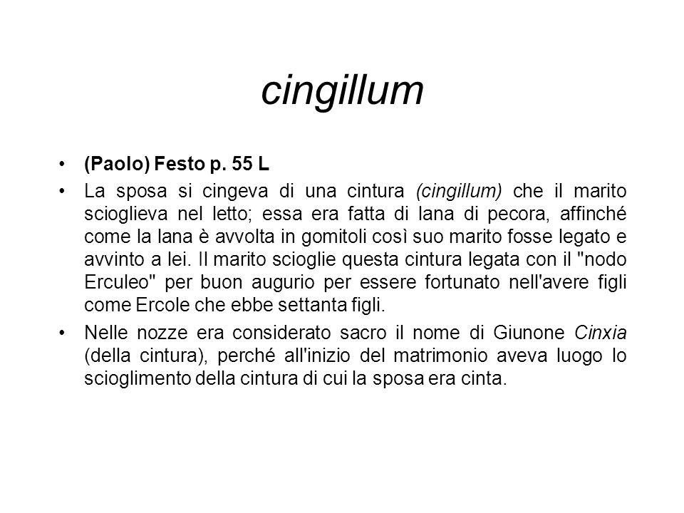 cingillum (Paolo) Festo p. 55 L La sposa si cingeva di una cintura (cingillum) che il marito scioglieva nel letto; essa era fatta di lana di pecora, a
