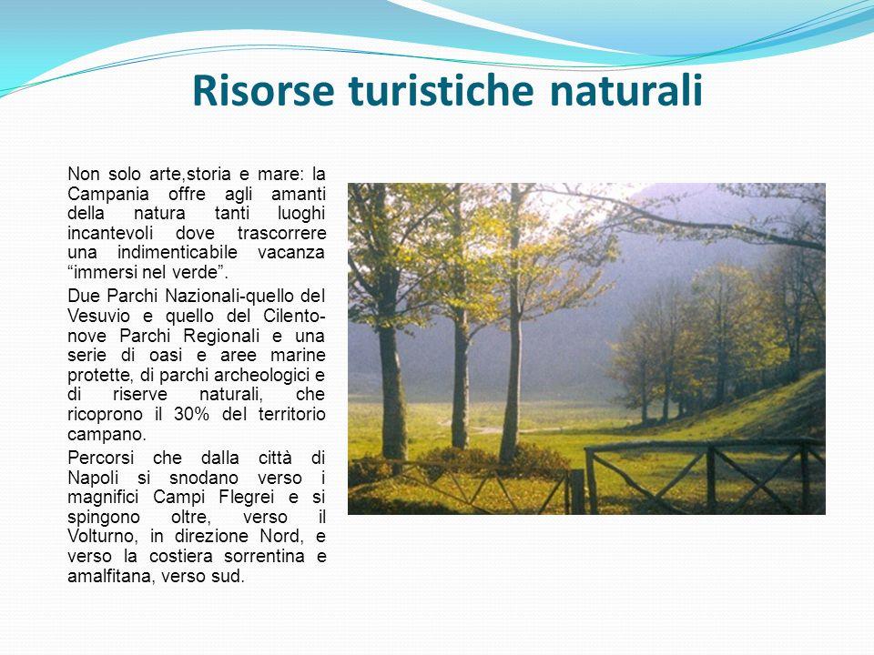 Risorse turistiche naturali Non solo arte,storia e mare: la Campania offre agli amanti della natura tanti luoghi incantevoli dove trascorrere una indi