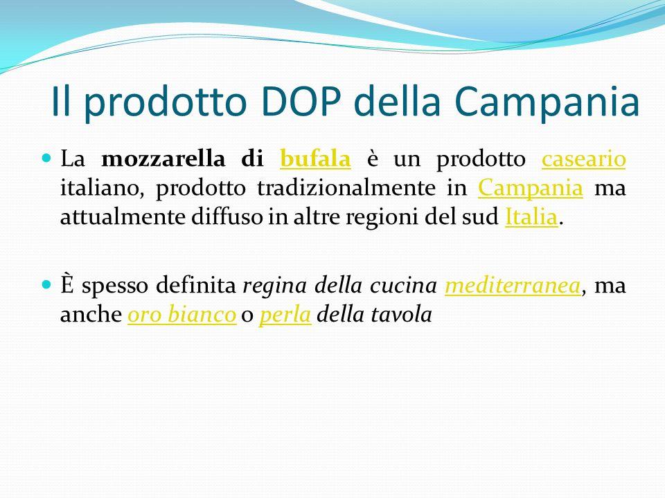 Il prodotto DOP della Campania La mozzarella di bufala è un prodotto caseario italiano, prodotto tradizionalmente in Campania ma attualmente diffuso i