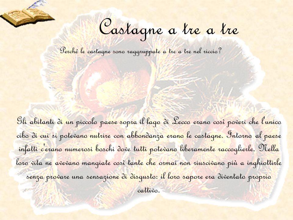 Castagne a tre a tre Gli abitanti di un piccolo paese sopra il lago di Lecco erano così poveri che l'unico cibo di cui si potevano nutrire con abbonda