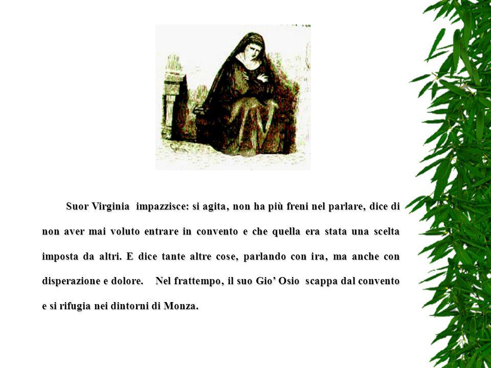 E p i l o g o Al processo il portinaio Domenico Ferrari scagiona il prete Arrisone dellomicidio del Roncino affermando che questultimo era stato uccis