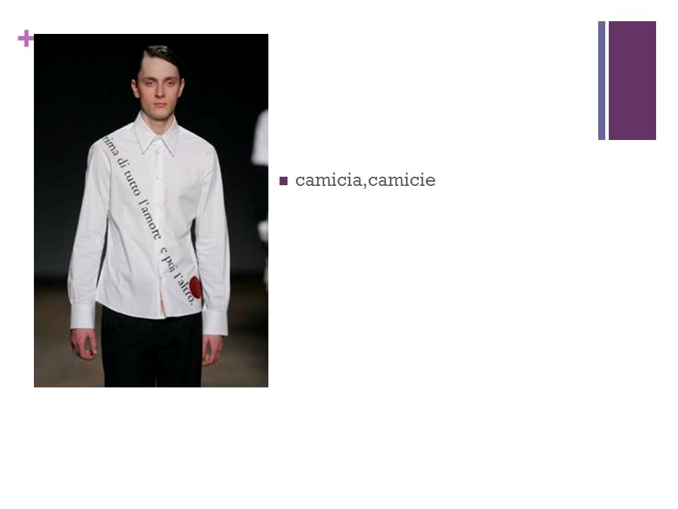 + camicia,camicie