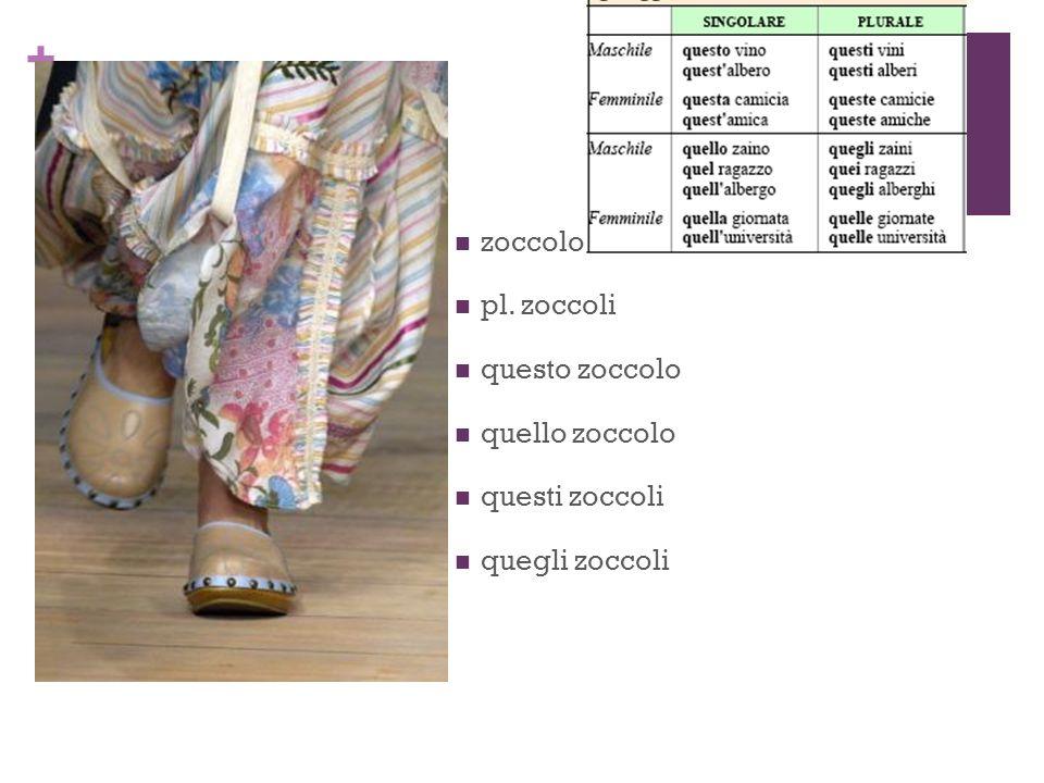 + zoccolo pl. zoccoli questo zoccolo quello zoccolo questi zoccoli quegli zoccoli
