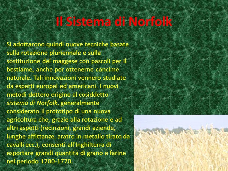 Il Sistema di Norfolk Si adottarono quindi nuove tecniche basate sulla rotazione pluriennale e sulla sostituzione del maggese con pascoli per il bestiame, anche per ottenerne concime naturale.