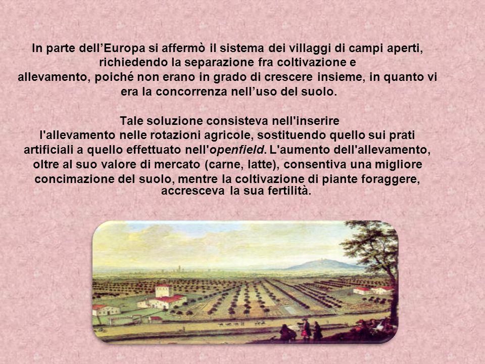 In parte dellEuropa si affermò il sistema dei villaggi di campi aperti, richiedendo la separazione fra coltivazione e allevamento, poiché non erano in