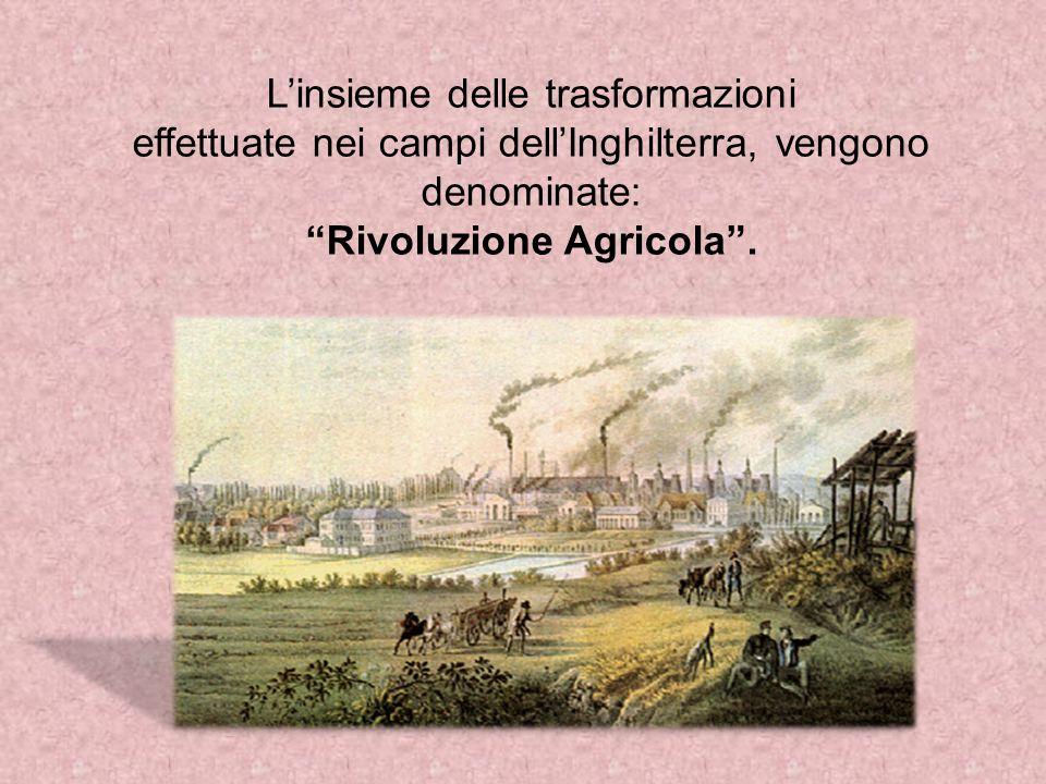 Linsieme delle trasformazioni effettuate nei campi dellInghilterra, vengono denominate: Rivoluzione Agricola.