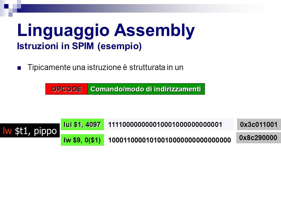 Linguaggio Assembly Istruzioni in SPIM (esempio) Tipicamente una istruzione è strutturata in un lw $t1, pippo OPCODE Comando/modo di indirizzamenti 111100000000010001000000000001 lui $1, 4097 lw $9, 0($1) 0x3c011001 0x8c290000 10001100001010010000000000000000