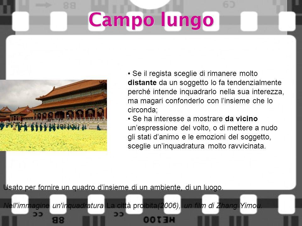 Campo lungo Usato per fornire un quadro dinsieme di un ambiente, di un luogo. Nell'immagine un'inquadratura La città proibita(2006), un film di Zhang