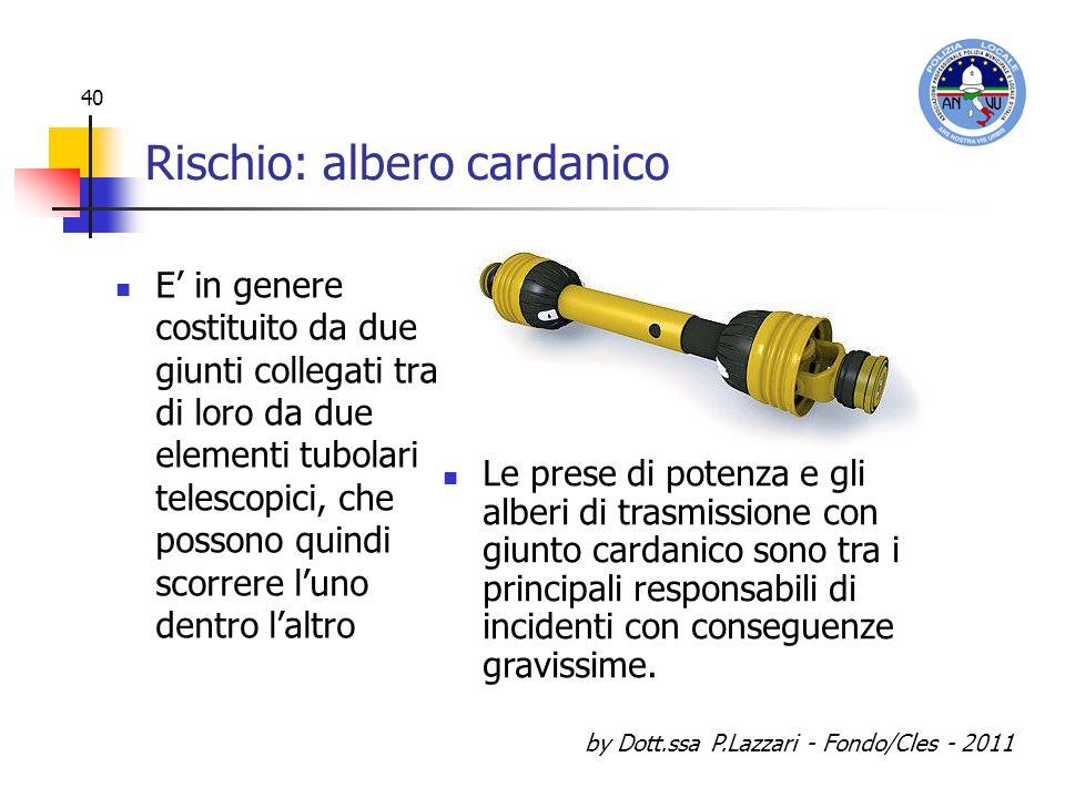 by Dott.ssa P.Lazzari - Fondo/Cles - 2011 40 Rischio: albero cardanico E in genere costituito da due giunti collegati tra di loro da due elementi tubo