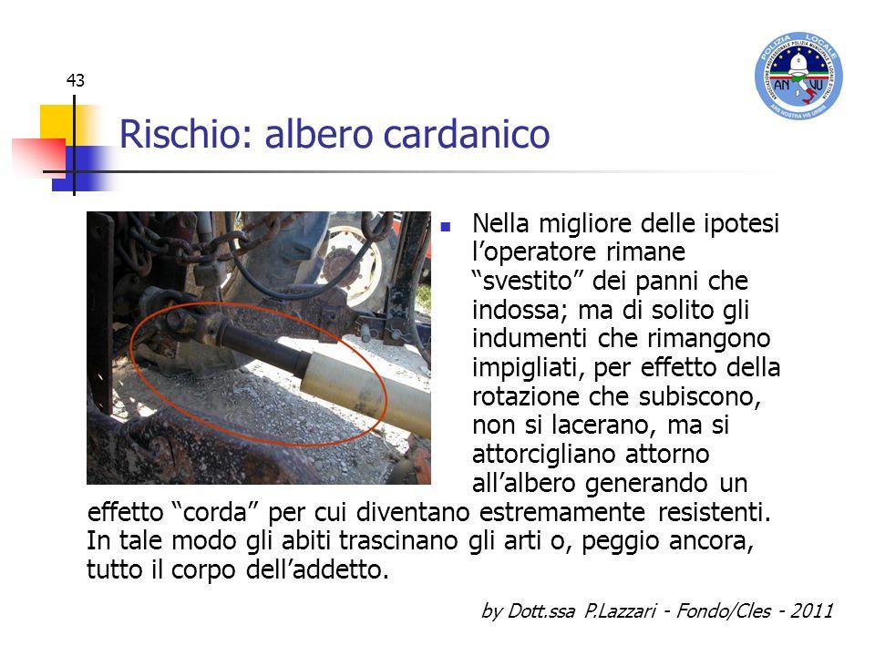 by Dott.ssa P.Lazzari - Fondo/Cles - 2011 43 Rischio: albero cardanico Nella migliore delle ipotesi loperatore rimane svestito dei panni che indossa;