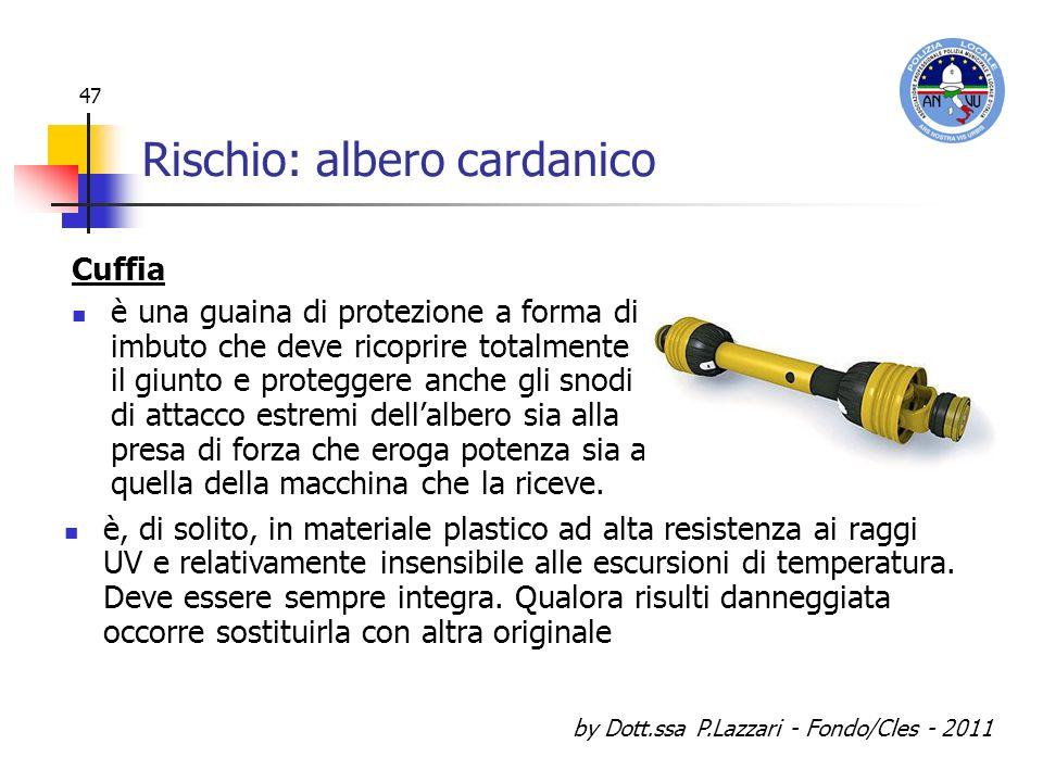 by Dott.ssa P.Lazzari - Fondo/Cles - 2011 47 Rischio: albero cardanico Cuffia è una guaina di protezione a forma di imbuto che deve ricoprire totalmen