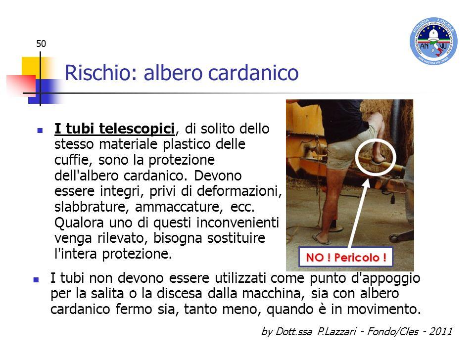 by Dott.ssa P.Lazzari - Fondo/Cles - 2011 50 Rischio: albero cardanico I tubi telescopici, di solito dello stesso materiale plastico delle cuffie, son