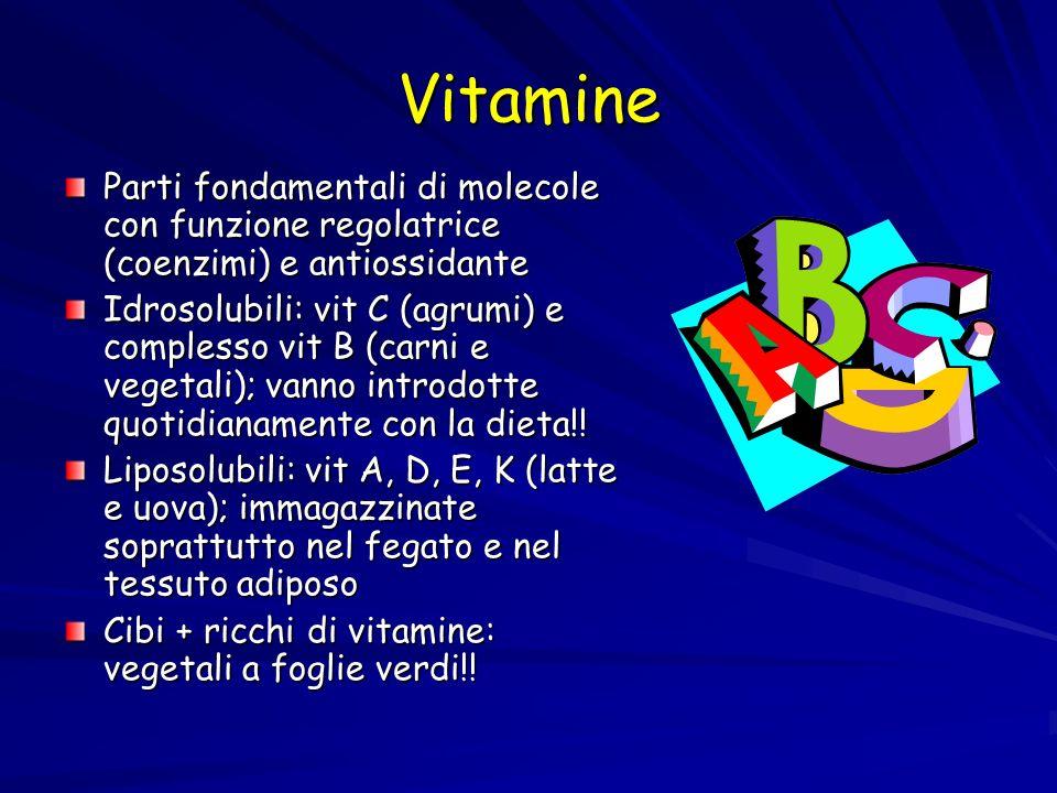 Vitamine Parti fondamentali di molecole con funzione regolatrice (coenzimi) e antiossidante Idrosolubili: vit C (agrumi) e complesso vit B (carni e ve